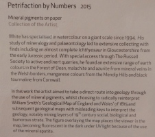 Petrification by Numbers - Information about the artist and the work