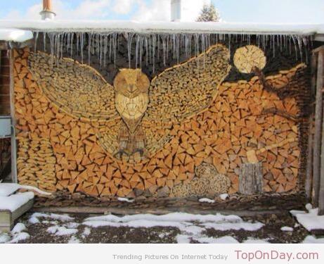 Owl wood pile