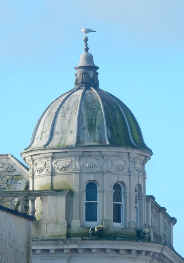 A seagull on the top of the dome on the top of the bank in Truro