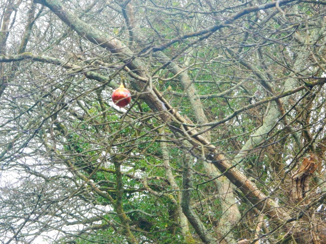 The bauble