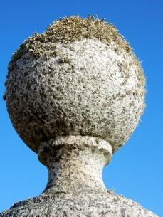 Gate post with lichen hair