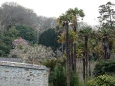 The garden at Penrose House