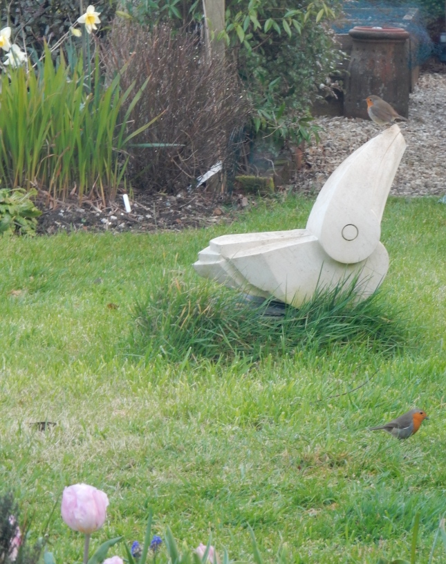 Robins and Fledgling by Richard Holliday