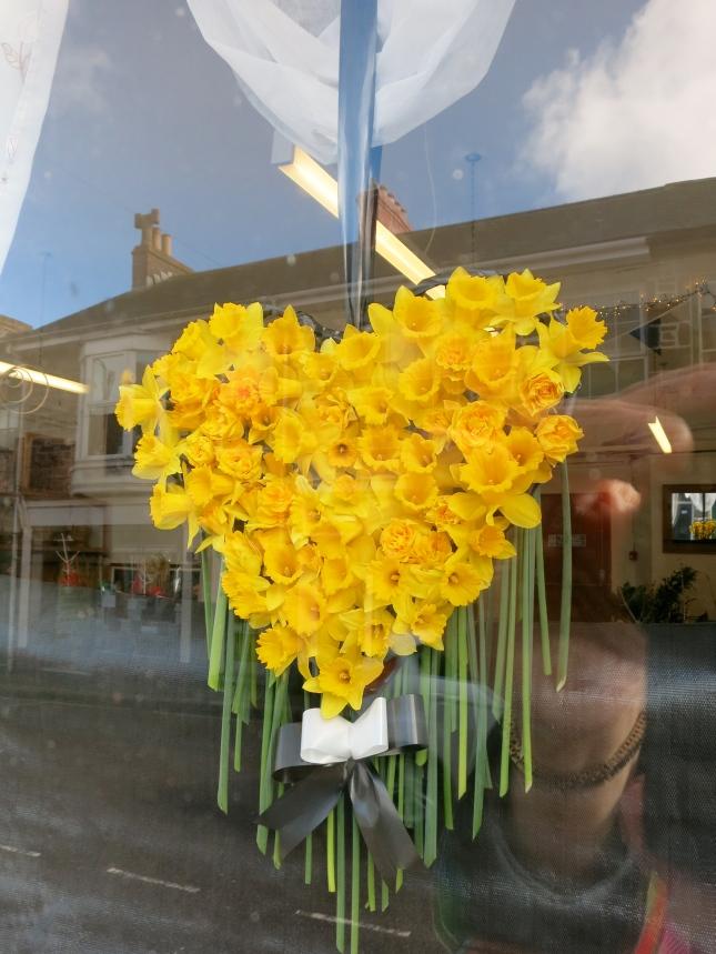 Daffodil heart