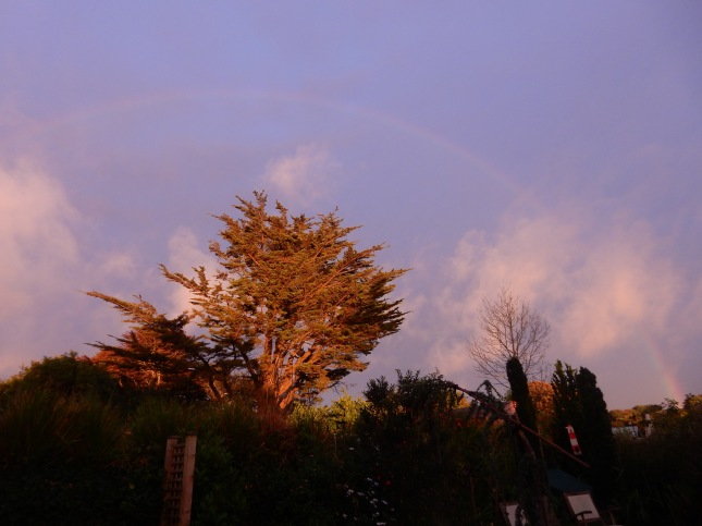 An evening rainbow