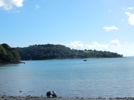 From the beach at Trelissick
