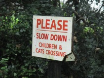 A pleasing sign