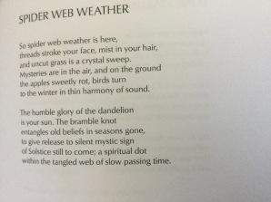 Spider Web Weather