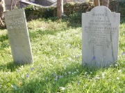 Julianna and Josiah Harvey, born in Cuba but died in Lanner nr Redruth