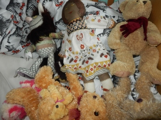 Cloth Kitty, A Wild Thing and teddies