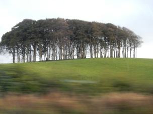The Copse from the passenger window