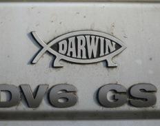 The Darwin fish