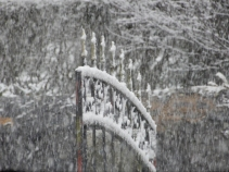 Snow patterns on the gate
